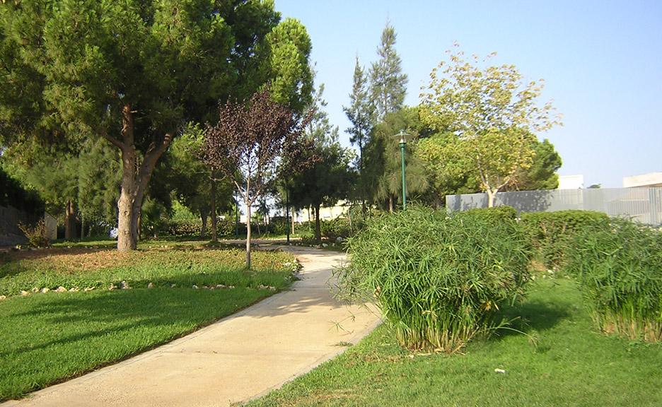 Creación de jardines en Valencia